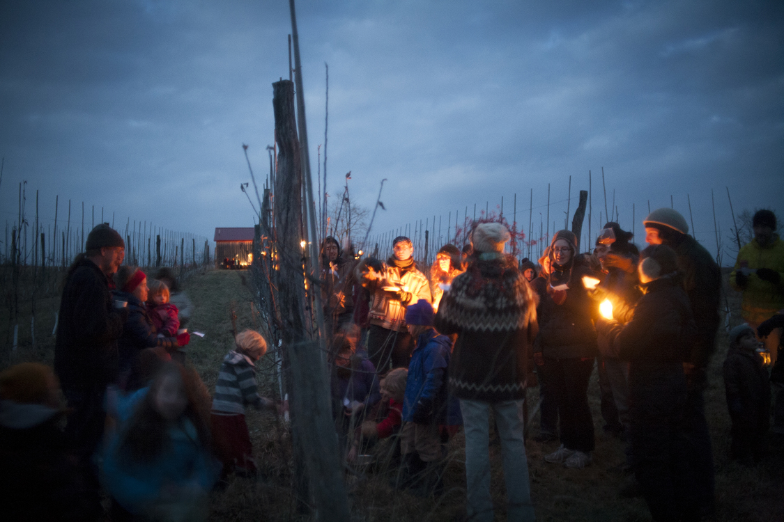 Wassailing at Redbyrd Orchard Cider
