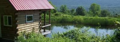 Cabin with pond and view of hillside