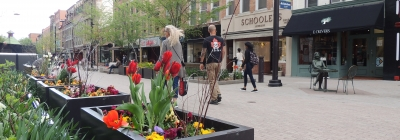 Ithaca Commons planters