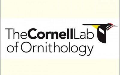 Cornell University - Lab of Ornithology / Sapsucker Woods Sanctuary