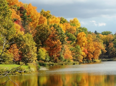fall foliage at Beebe Lake in Ithaca NY