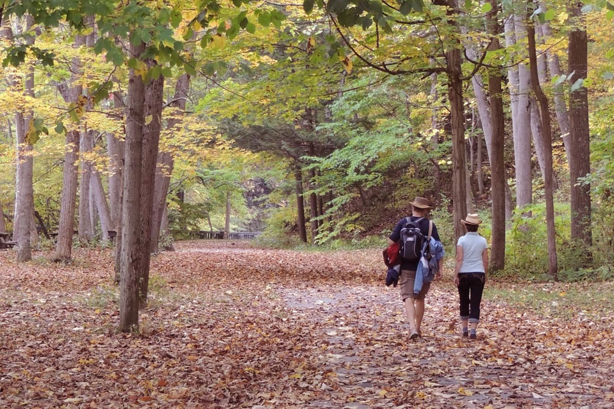 5 best fall hikes in Ithaca.